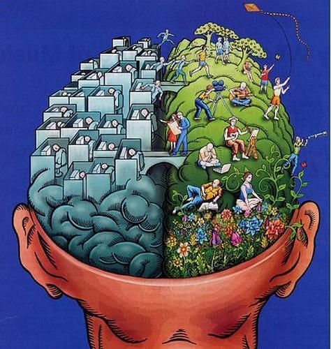 Hemisférios cerebrais e personalidade: um mito cai por terra?