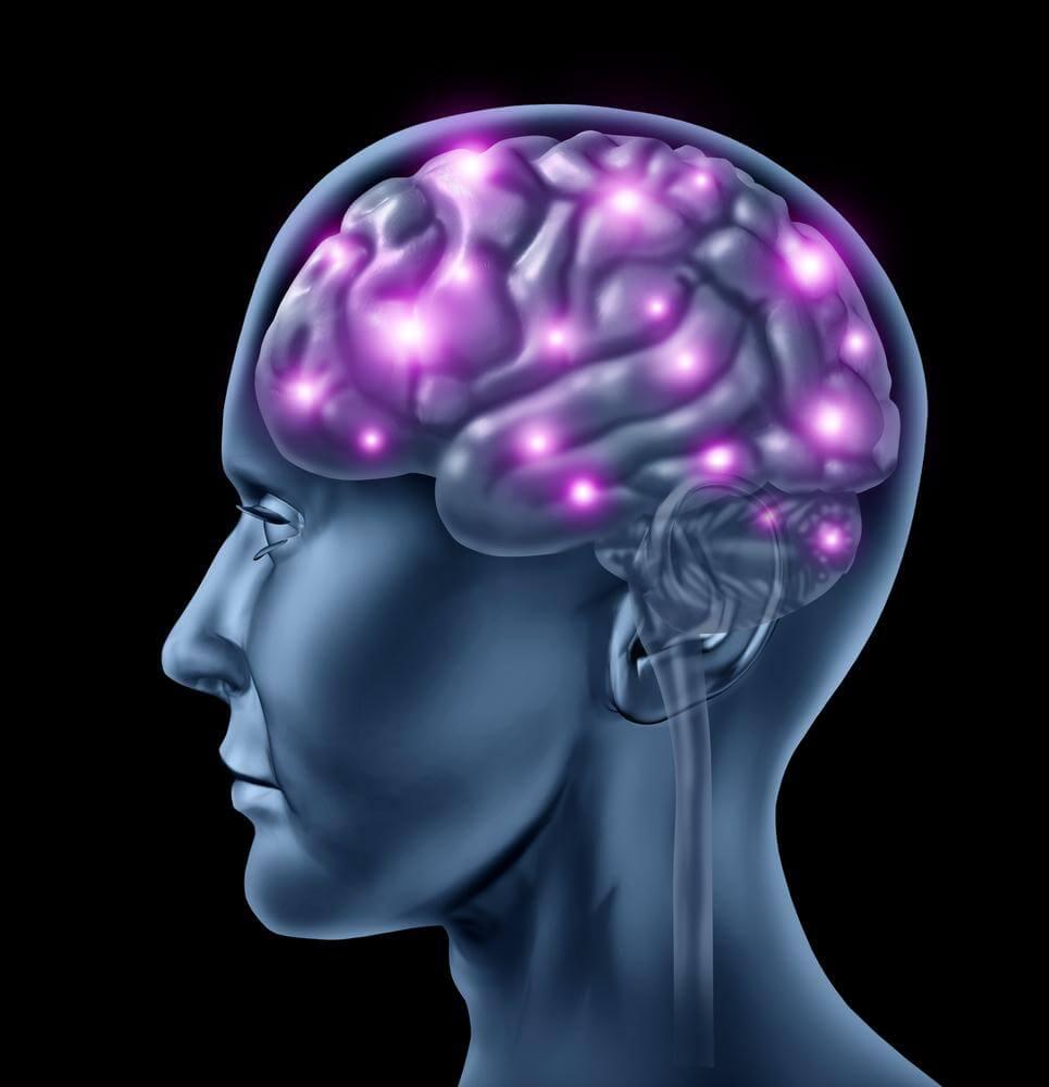 Oito curiosidades sobre o funcionamento do cérebro