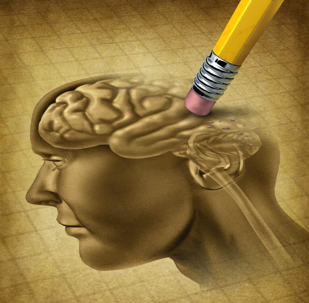 Seis ideias para treinar o cérebro e evitar a perda de memória