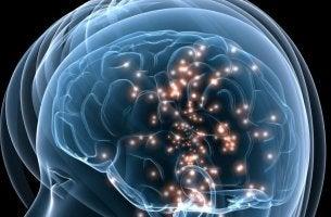 Neurônios espelho