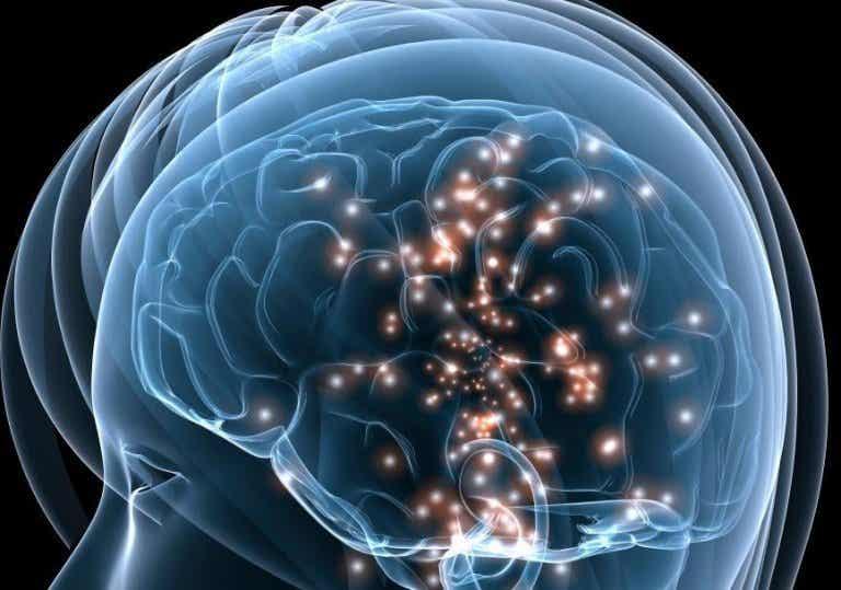 Conheça os neurônios espelho