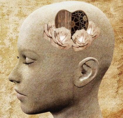 a intoxicação altera as percepções