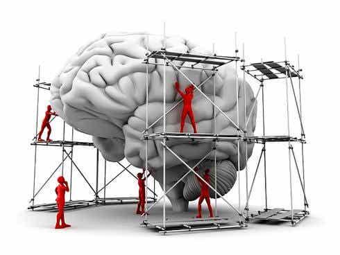 Aprenda a programar seu cérebro