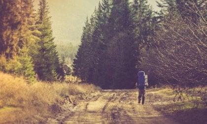 A resiliência e o aprendizado que nasce do sofrimento