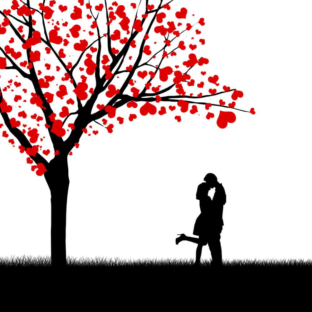 Podemos nos apaixonar pela pessoa que quisermos?