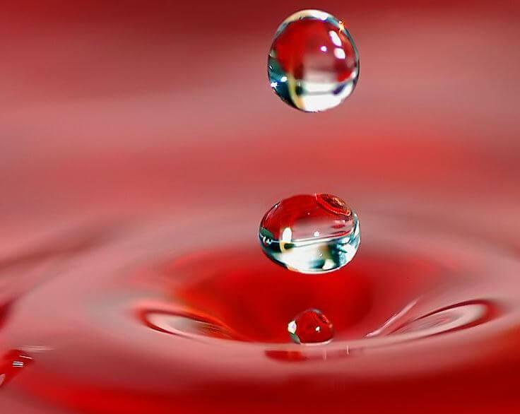 O Amor Liquido E A Fragilidade Dos Vinculos
