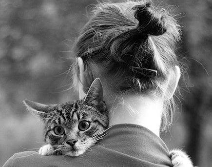 mulher-e-gato