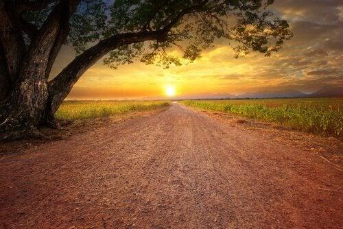 Superar a desmotivação e seguir em frente