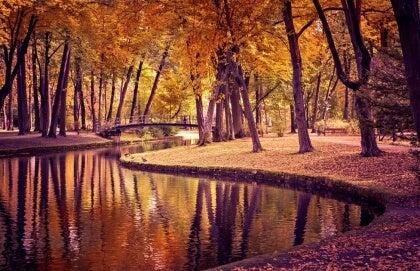 paisagem-outono