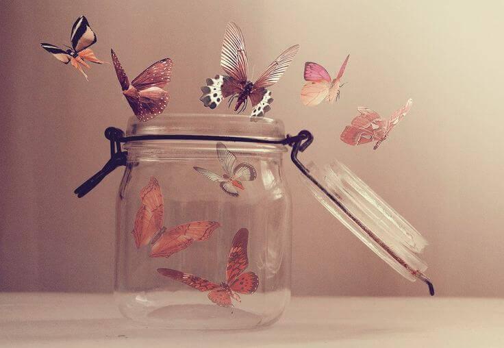 Deixar ir as borboletas
