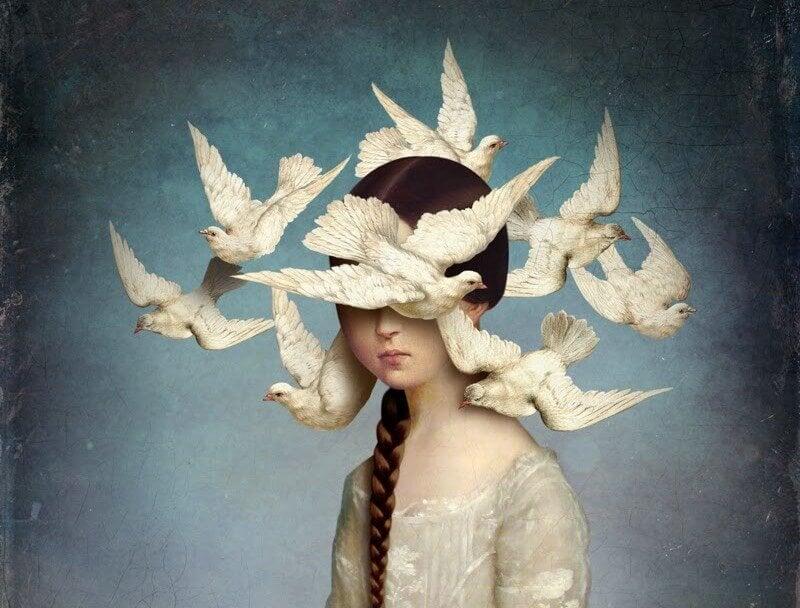 pombas brancas
