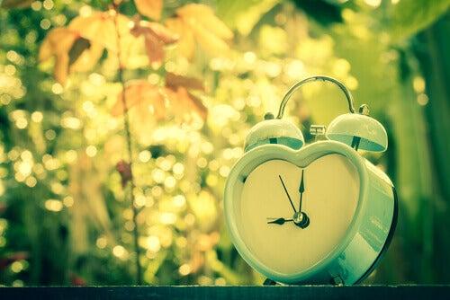 despertador do amor