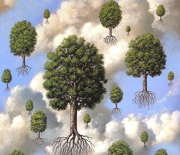 árvores com raízes