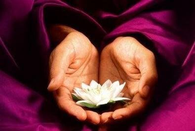 Mãos com flor de lótus