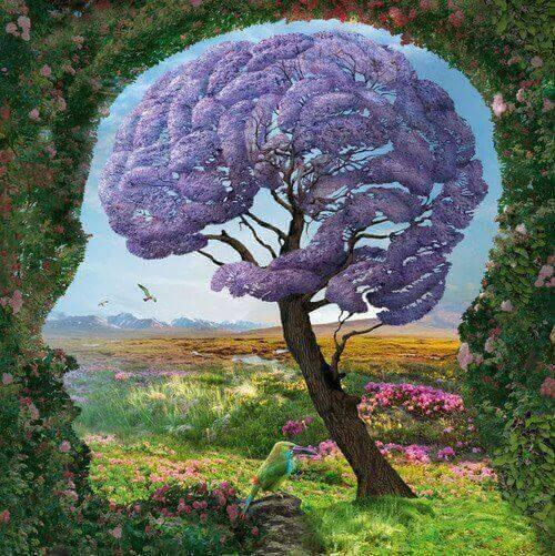 Cérebro natureza