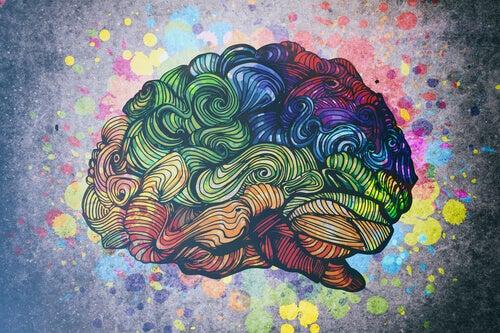 Os tipos de inteligência representados pelo cérebro