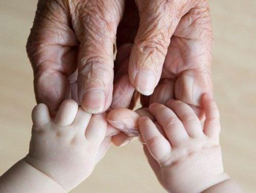 Netos Um Legado De Amor Entre Pais E Filhos
