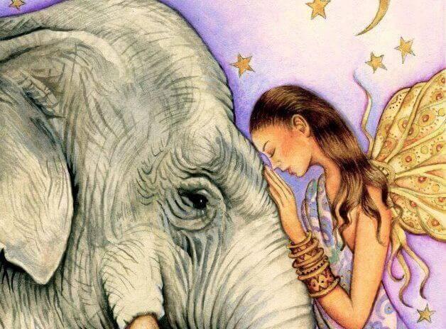 mulher-fazendo-o-bem-a-elefante