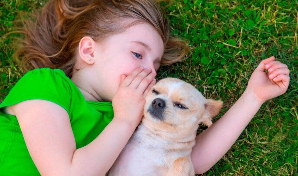Menina cochichando para seu cão