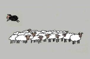 Ser a ovelha negra da família