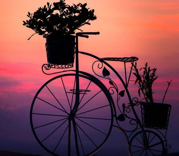 bicicleta-anoitecer