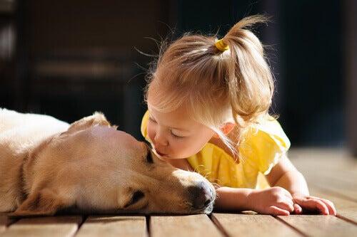 criança amável com cachorro