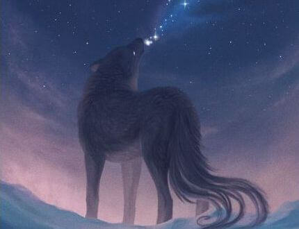 lobo-estrelas