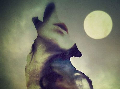 imagem-de-mulher-em-lobo