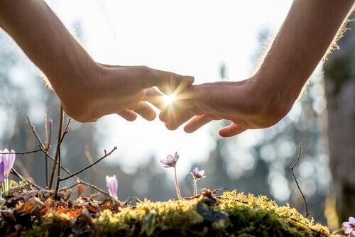 Dia Mundial do meio ambiente: cuidados consigo, os outros  e o meio para praticar a sustentabilidade todos os dias