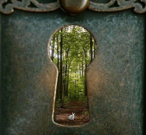 fechadura-floresta