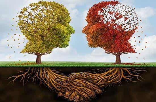 10 tipos de psicólogos