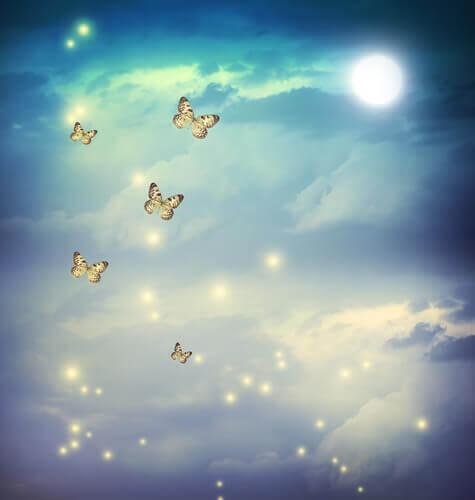 Borboletas-voando-pelo-céu-representando-o-medo