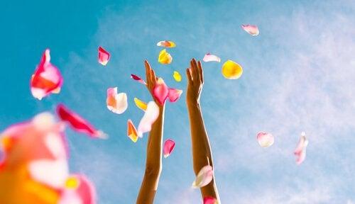 Mãos ao alto atirando pétalas de flores
