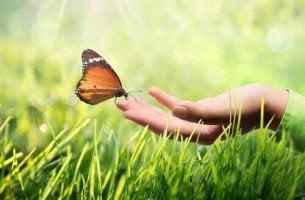 A importância do otimismo diante de uma doença grave