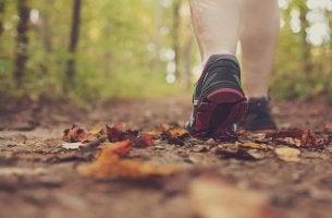 Os benefícios de caminhar