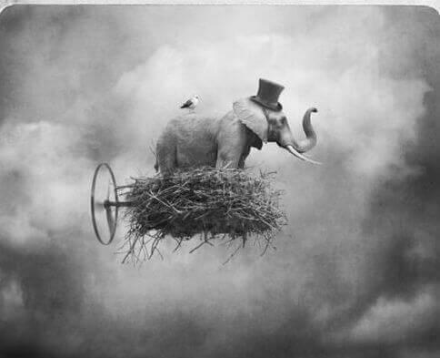 elefante em uma nuvem