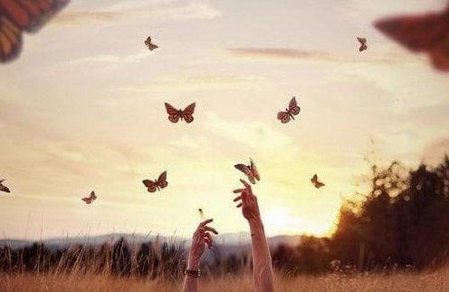 mãos-borboletas-campo