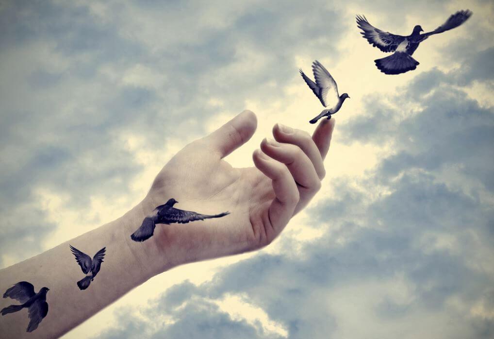 mão-pássaros