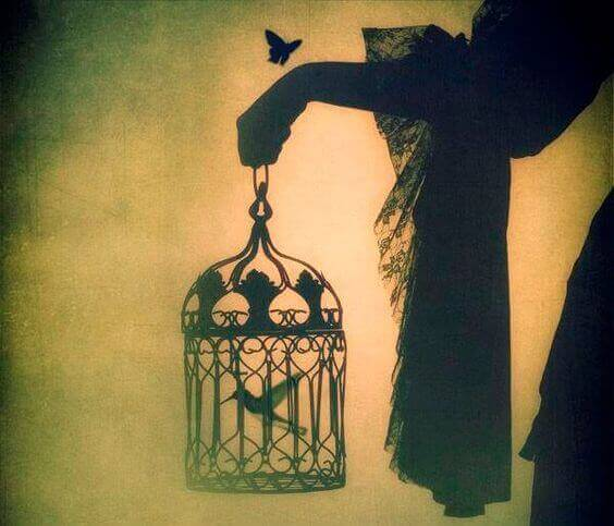 o pássaro que nasceu em uma gaiola pensa que voar é uma doença
