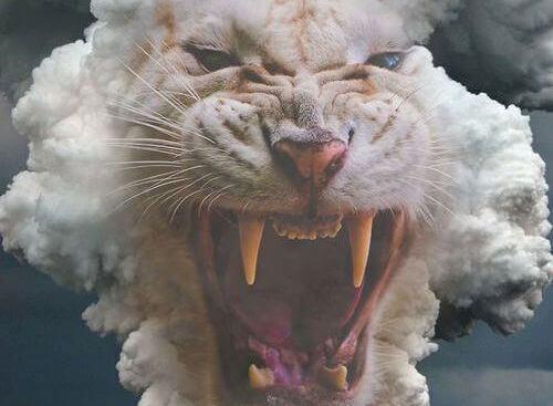 tigre-branco-com-a-boca-aberta