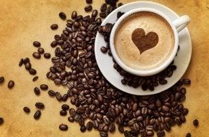 Benefícios do café descafeinado para o nosso cérebro