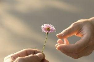 Reciprocidade, um dos alicerces dos nossos relacionamentos