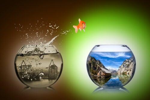 Superar o medo de mudar