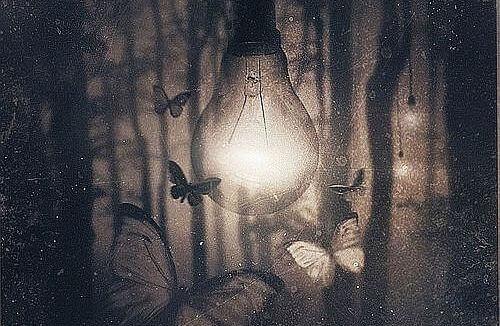lampada-borboletas