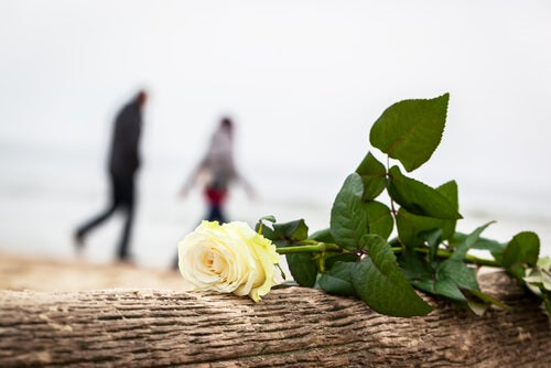 Lembranças de um amor que foi embora de sua vida