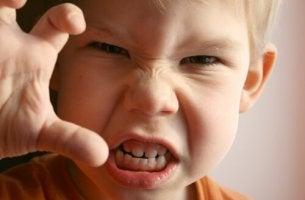 O narcisismo, a semente da agressividade na infância