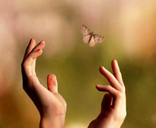 maos-borboleta
