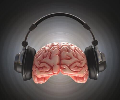 Cérebro-ouvindo-música