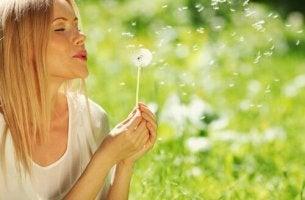 Aprenda a encontrar a alegria de cada dia