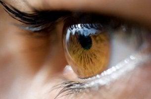 O que a cor dos olhos transmite?